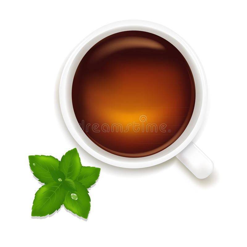 Cup Of Tea With Mint. Vector Stock Images