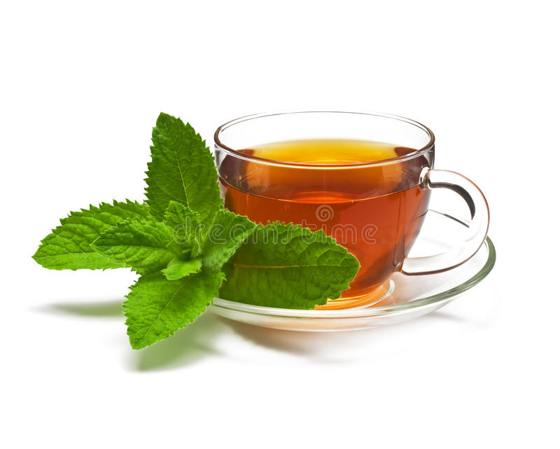 Cup tea with mint on a white background. royalty free stock images
