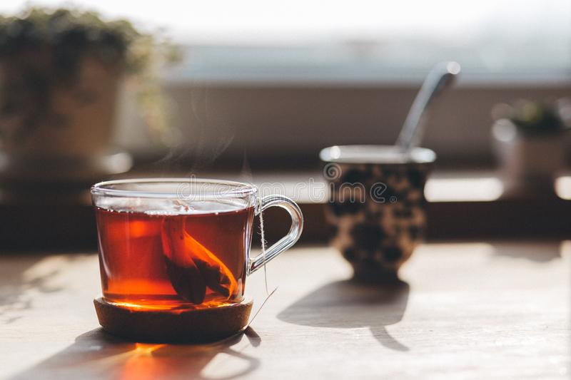 Cup of tea outdoors stock photography