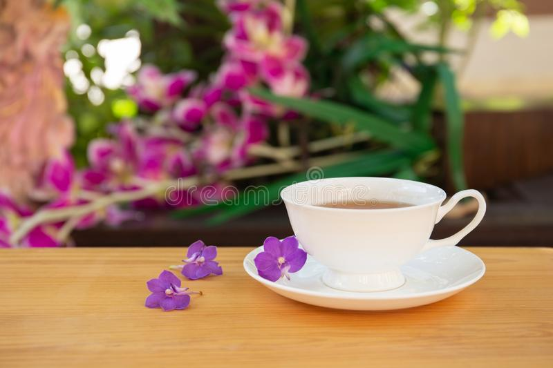 Cup of tea with purple flower on wooden table in garden. royalty free stock photography