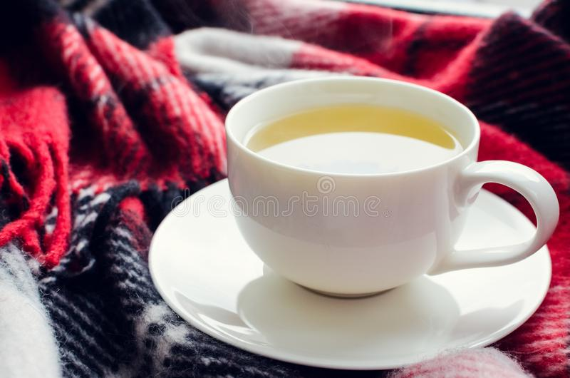 Cup of autumn tea. Cup of tea on red warm woolen blanket. Hot drink for cold rainy days. Danish hygge concept, autumn mood. Cozy winter or autumn morning at home stock photos