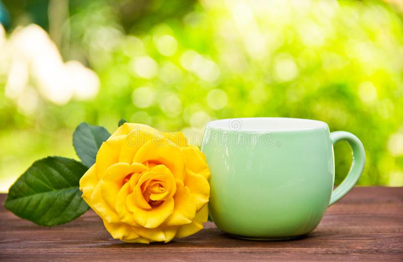 Cup of tea and rose on background of spring greens. Tea in the garden. Cup of coffee and fragrant yellow rose. stock photo