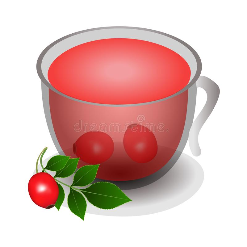 Cup of tea from rose hips isolated on a white background. Cup of tea from rose hips isolated on a white background, beautiful illustration royalty free illustration