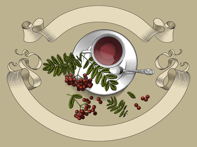 Cup with tea, small spoon saucer and rowan branch with a retro ribbon banner. Vintage color stylized drawing. Vector illustration royalty free illustration