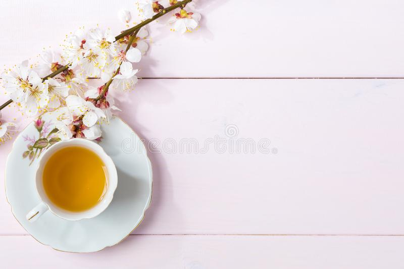 Cup of tea and spring flowers blooms of an Apricot on a light pink wooden table royalty free stock photos