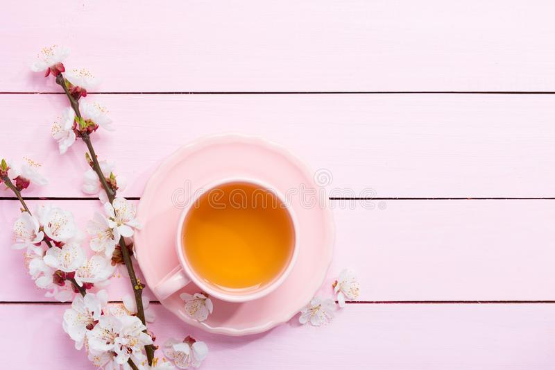Cup of tea and spring flowers blooms of an Apricot on a light pink wooden table royalty free stock photo