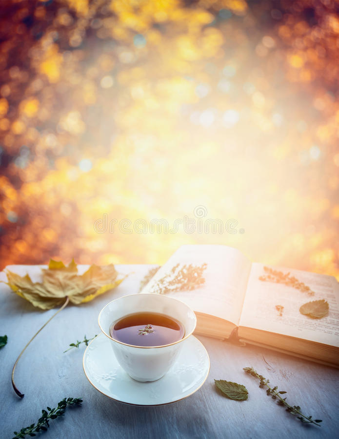 Cup of tea with thyme, autumn leaves and open book on wooden window sill on nature autumn blured background. Cup of tea with thyme, autumn leaves open book on stock photo
