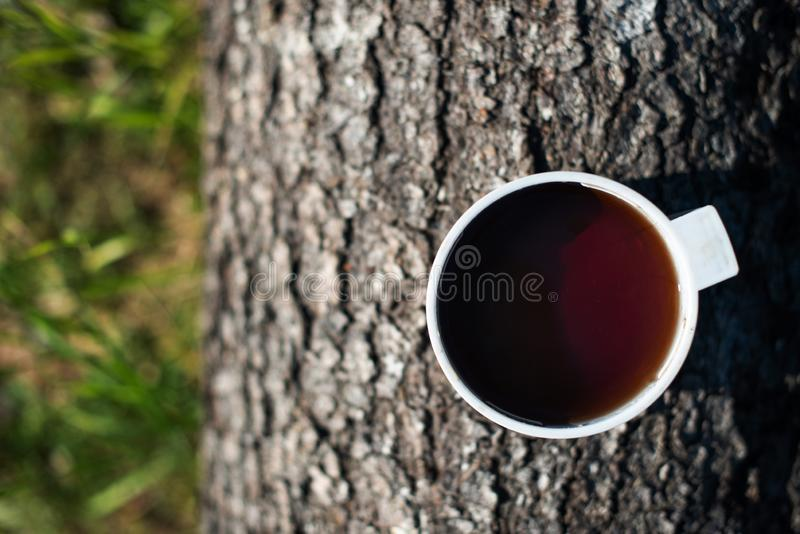 Cup of tea on a tree trunk. view from above. close-up stock photography