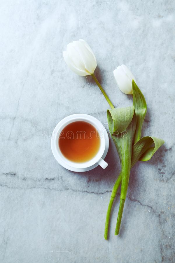 A cup of tea and white spring tulips on gray stone background. Flat lay. Copy space stock photo