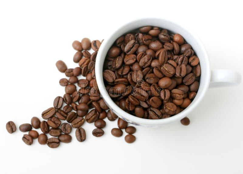 Cup und Kaffeebohnen lizenzfreies stockbild
