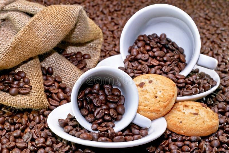 Cup und Plätzchen lizenzfreies stockfoto