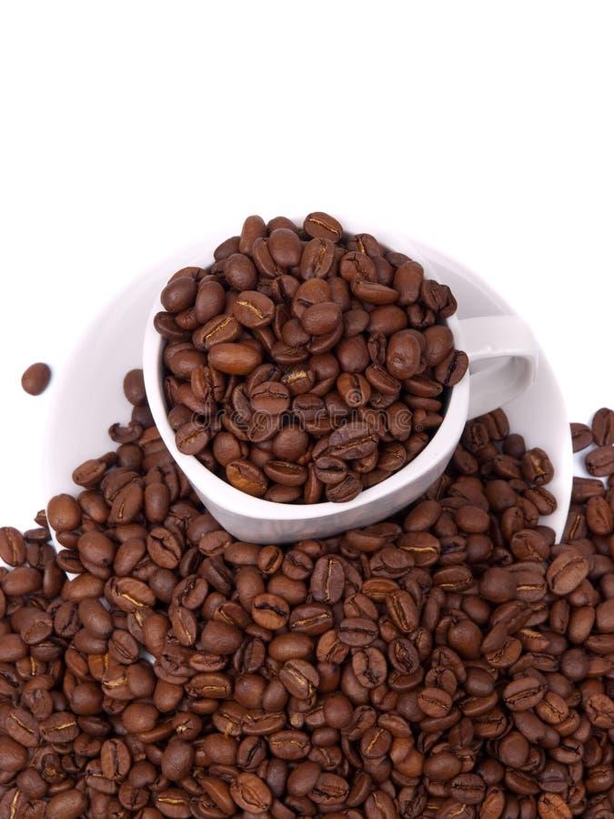 Cup und Saucer mit Kaffeebohnen stockbild