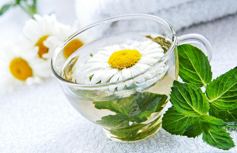 Cup of warm camomile-mint tea stock image
