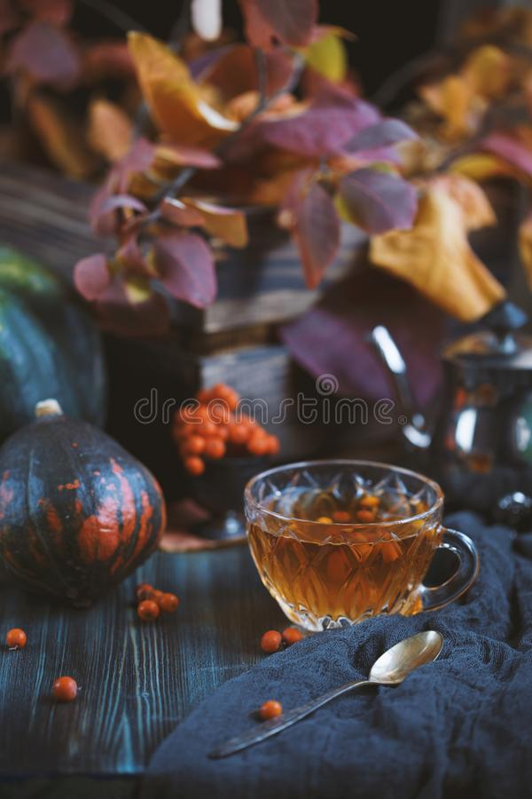 Cup with warm tea on a table on a background of orange leaves and pumpkins. Cozy, home concept royalty free stock images