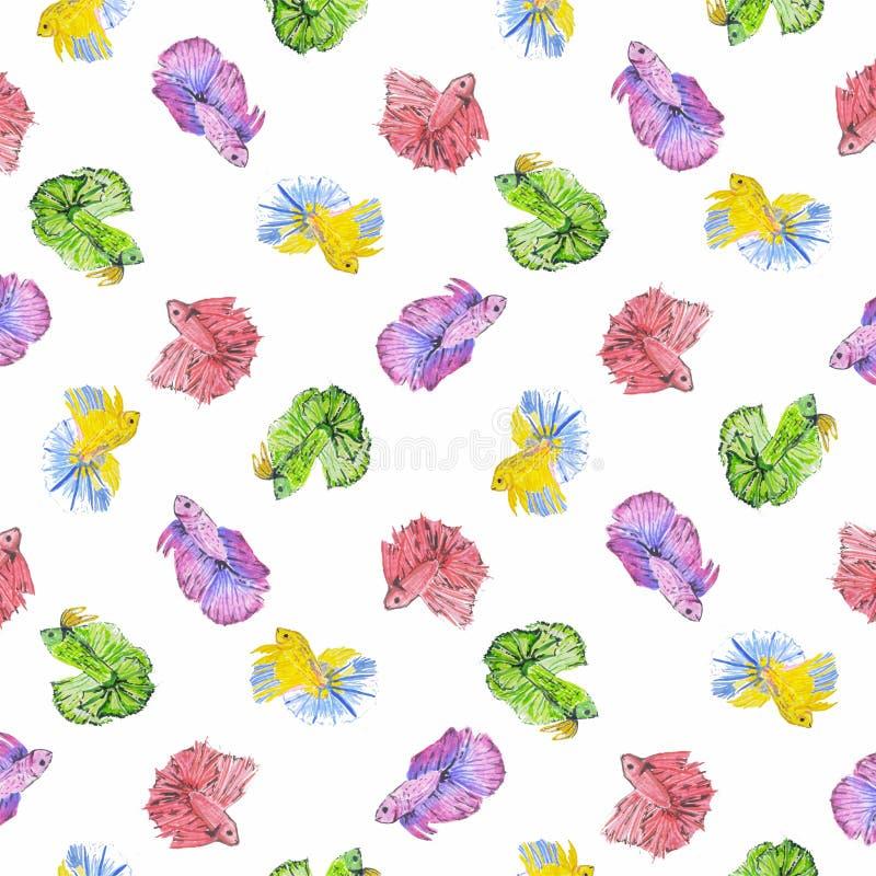 Cupang watercolor royalty free stock image