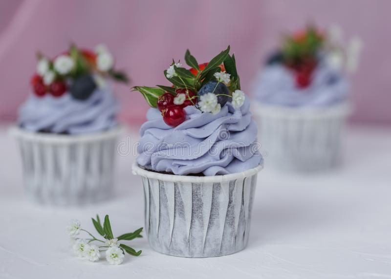 Cupcake with berries and mascarpone royalty free stock photos