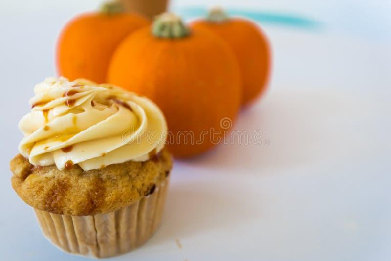 Cupcake and pumpkins. Pumpkin caramel cupcake with cream cheese swirl and baby pumpkin royalty free stock photography