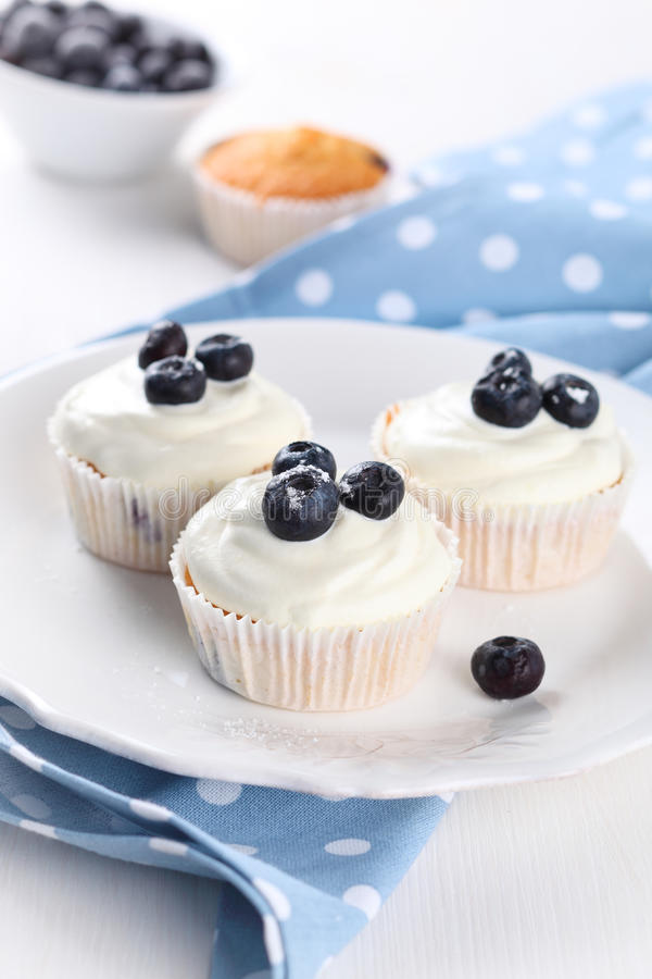 Free Cupcake With Blueberries Stock Photo - 18977230