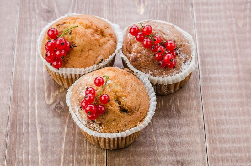 Cupcakes decorated with red currant on a wooden background/Cupcakes decorated with red currant on a wooden background. top view. Dessert berry sweet three stock photos