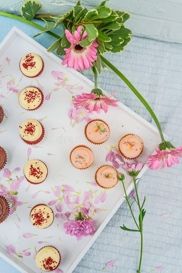 Cupcakes & Flowers royalty free stock photos