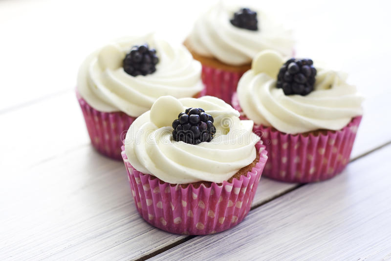 Cupcakes with frosting stock photography