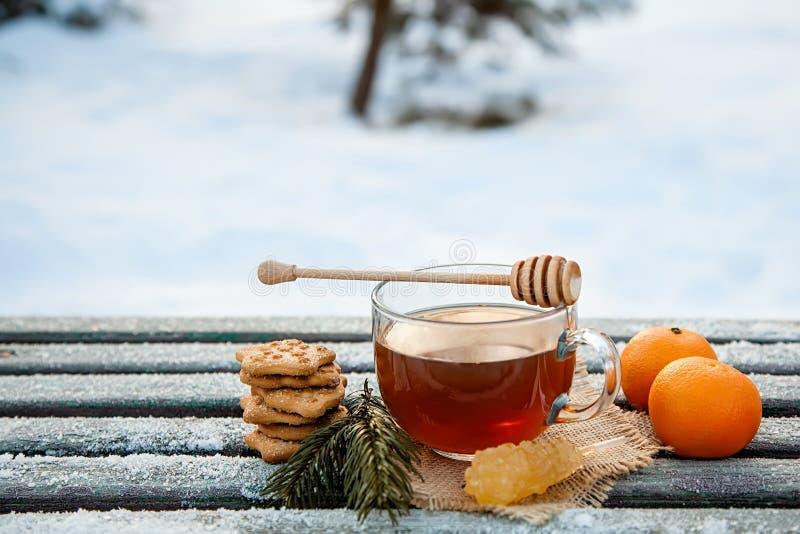 Cupen av varmt te med honung, tangeriner och kakor i vinterskogen, begreppet stillastående julliv royaltyfri bild