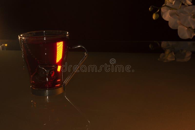 Cupen med varmt te med teapot inuti det vilar i varmt vatten för att få fram essensen av Jamaica och ger en vit orkidé i bakgrund arkivbild