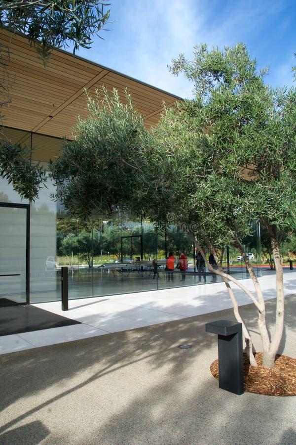 CUPERTINO, CALIFORNIA, FÖRENTA STATERNA - NOV 26, 2018: Apple Park Visitor Center från utsidan arkivfoto