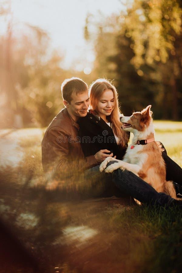 Cuple bonito com cão border collie no campo verde no parque sob a árvore na luz do sol foto de stock royalty free