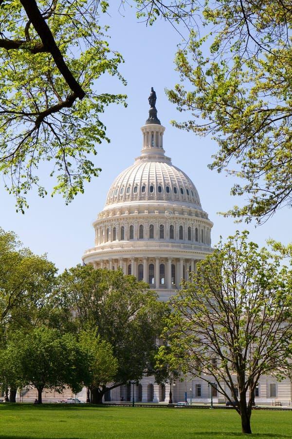 Cupola del capitale degli Stati Uniti fotografia stock libera da diritti