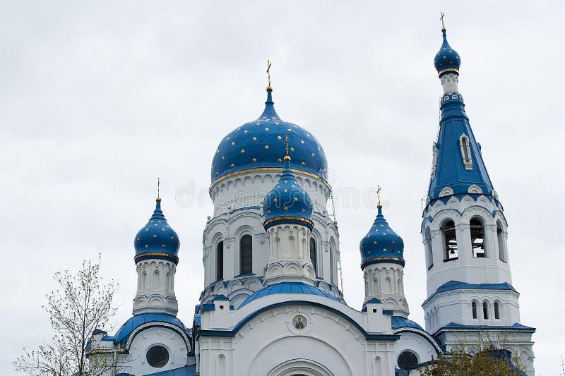 Cupola della cattedrale di intercessione fotografia stock libera da diritti