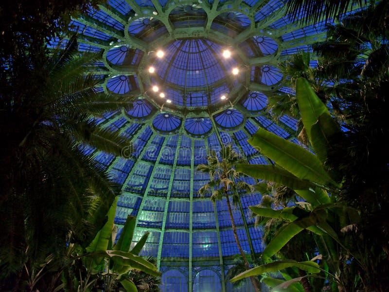 Cupola della serra reale di Laeken alla notte immagine stock