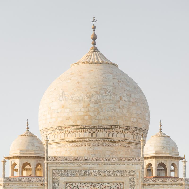 Cupola di marmo principale del Taj Mahal, Agra, India immagine stock libera da diritti