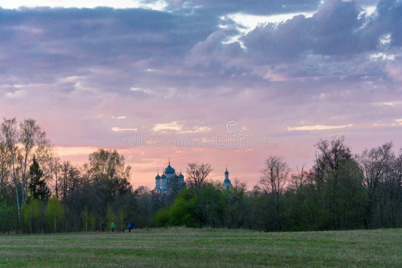 Cupole della chiesa contro il cielo rosa fotografia stock