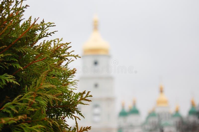 Cupole vaghe della cattedrale del ` s di Sophia del san con il fuoco sull'albero di thuya a Kiev Kyiv, Ucraina immagini stock libere da diritti