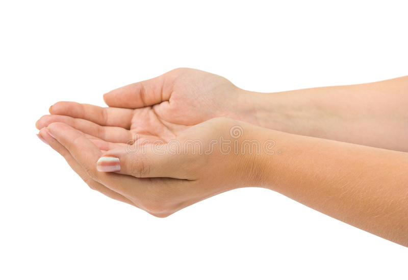 Cupped hands. Empty cupped hands isolated on white background stock photography