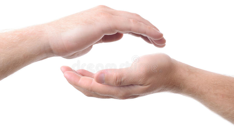 Cupped hands. Two cupped hands concept of protecting, isolated on a white background stock photo
