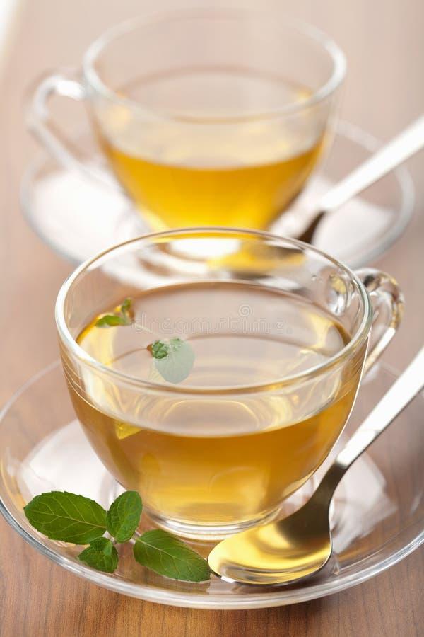 cups grön tea två royaltyfri fotografi