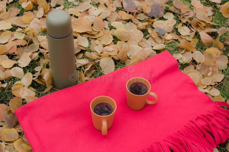 Cups with tea and thermos during a picnic in autumn stock image