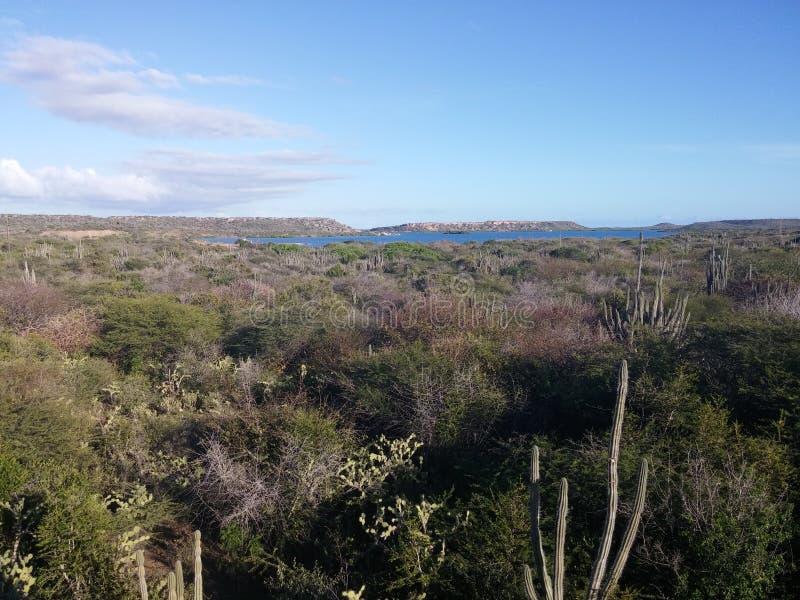 Curaçao-Landschaft lizenzfreie stockbilder