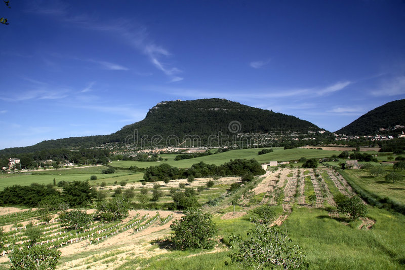 Download Cura Valley in Majorca stock image. Image of growing, hill - 2409959