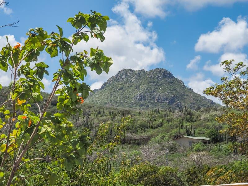 Curacao för Christoffelberg bergChristoffel nationalpark sikter royaltyfri fotografi