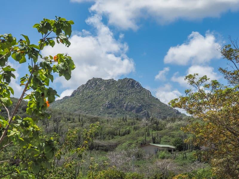 Curacao för Christoffelberg bergChristoffel nationalpark sikter arkivbild