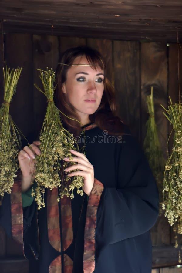 Curador con las hierbas secadas foto de archivo libre de regalías