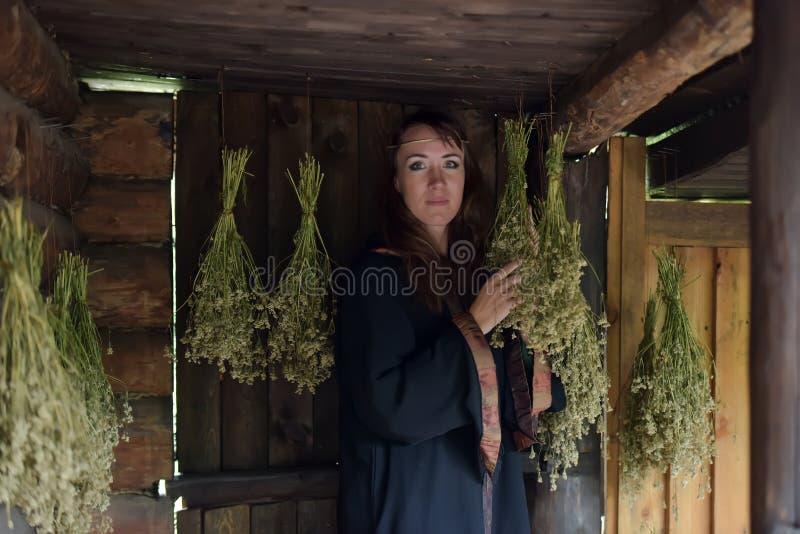 Curador con las hierbas secadas fotografía de archivo