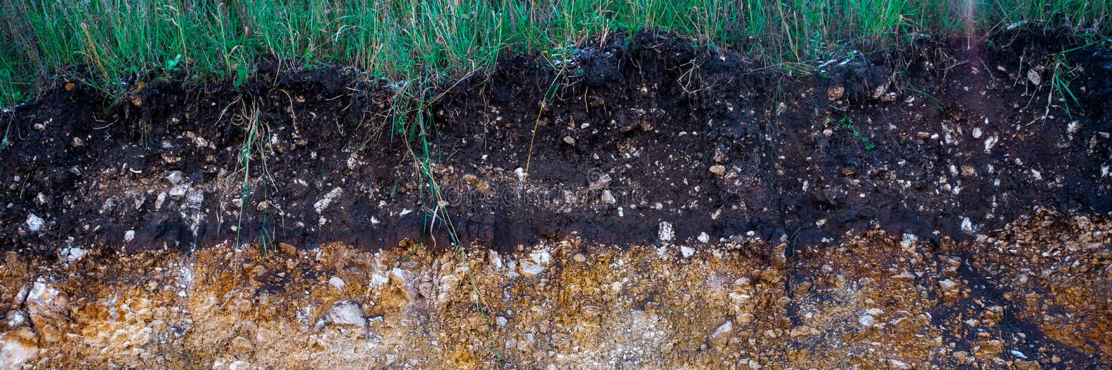 The curb erosion from storms. To indicate the layers of soil and rock. Nature cross section soil underground with green grass, royalty free stock image
