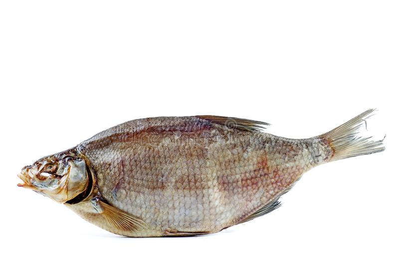 Cured bream fish isolated on a white background royalty free stock image
