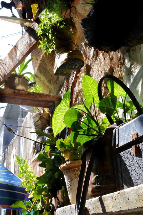 Curiosidades no acre, no Akko, nas botas e nas sapatas, bolsas, como os potenciômetros de flor, projeto exterior e decoração, em  foto de stock royalty free