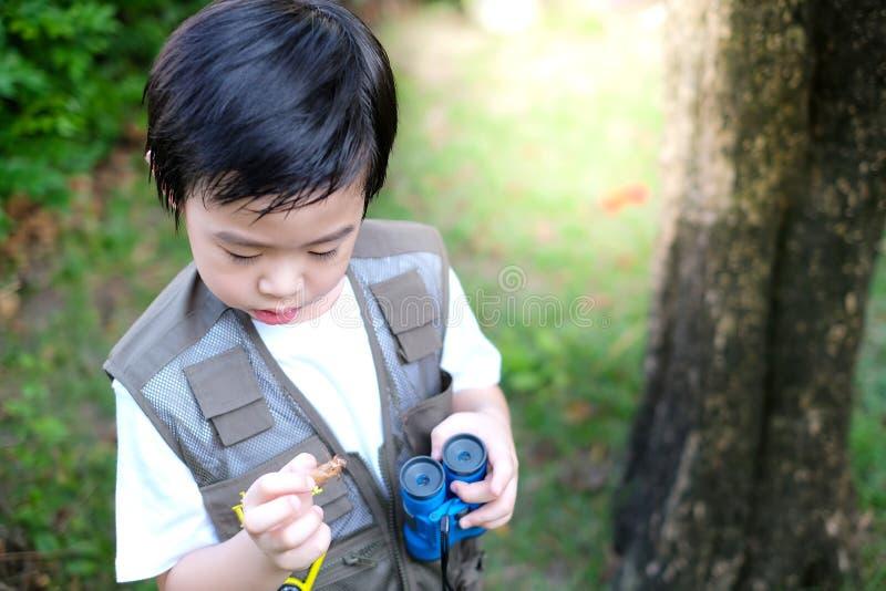 Curioso niño asiático sujetando un prismáticos y una mota de cigarra en el jardín foto de archivo