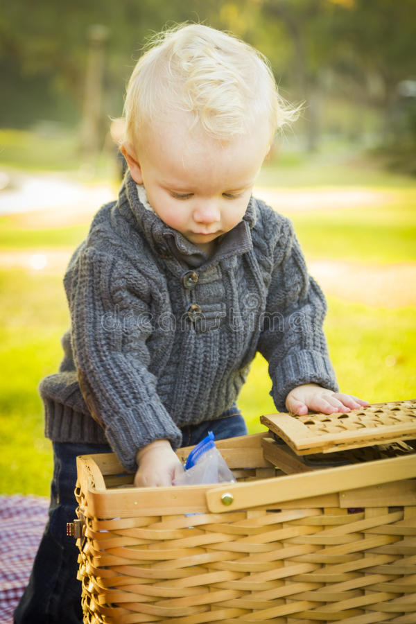 Curious Blonde Baby Boy Opening Picnic Basket Outdoors at the Park royalty free stock photo
